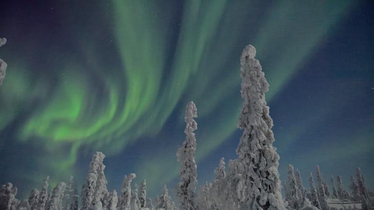 Zorza polarna Lumia 950